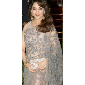Madhuri Dixit Grey And Peach Net Saree