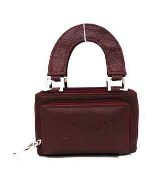 BG Shoppe Brown  Hand-Wallet - HWIT2213