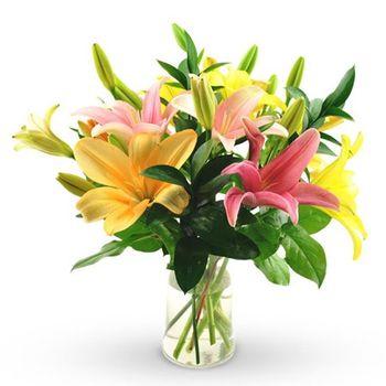 Exuberant Lilies