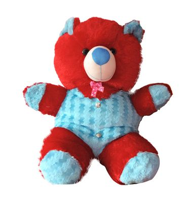 Red & Sky Blue Medium Size Teddy