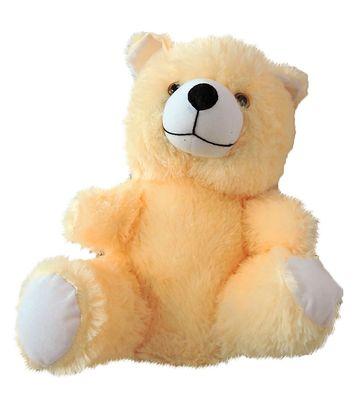 Cream Color Teddy Bear