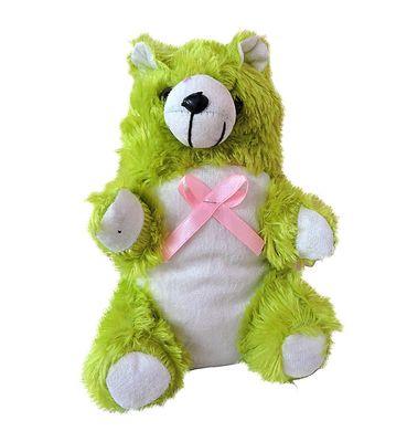 Green  Small Teddy Bear