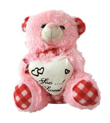 Cute Pink Teddy Bear (SMALL)