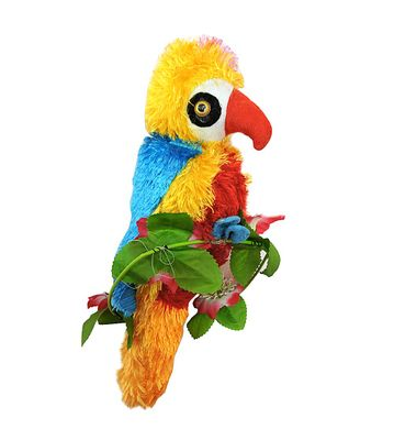 Parrot Teddy