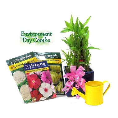 Exotic Green Environment Day Special Feng Shui 3 Layer Bamboo Plant