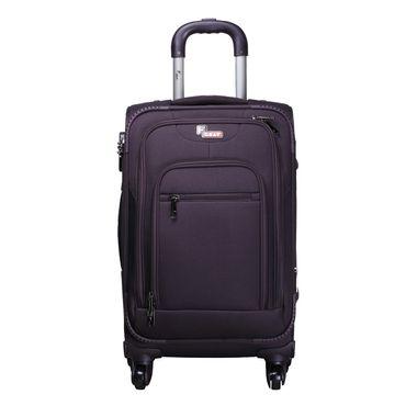 Glider Purple Check-in Luggage - 28 Inch