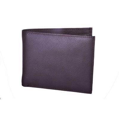 Leatherplus Brown Wallet for Men(2011)