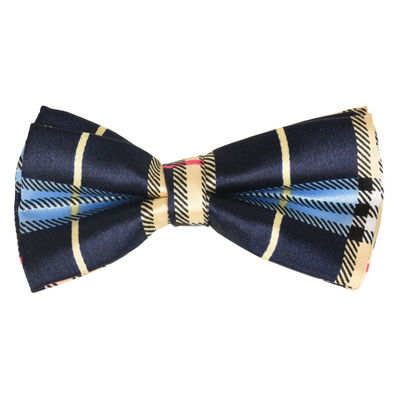 Tiekart kids blue checked  bow tie