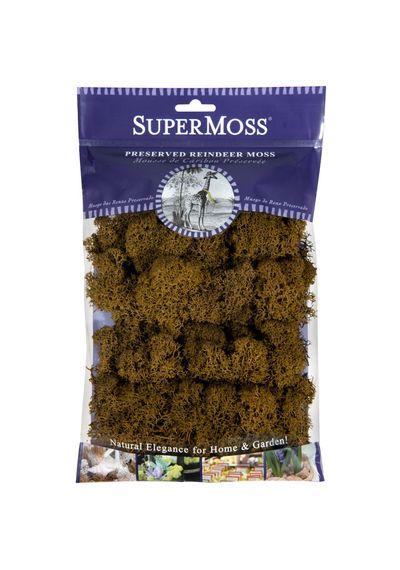 Brown - Preserved Reindeer Moss 2oz