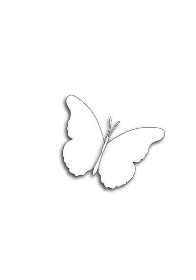 Delia Butterfly