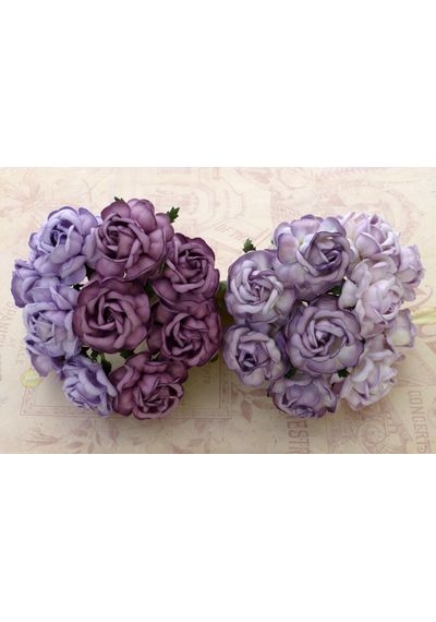 Curved Roses Combo - PURPLE/LILAC