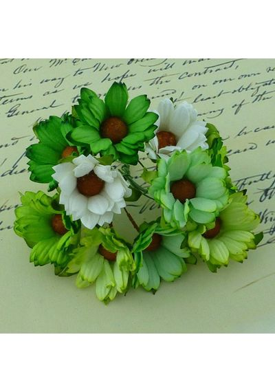 Daisy Flower - Green Combo