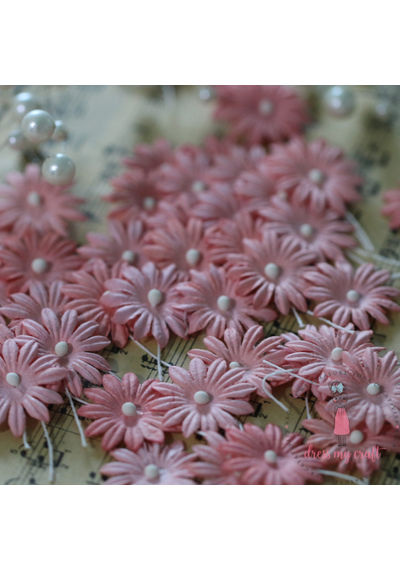 Daisy Flat Flowers with Pollens - Pink