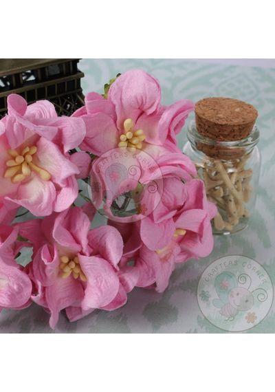 Gardenia Flowers - Pink