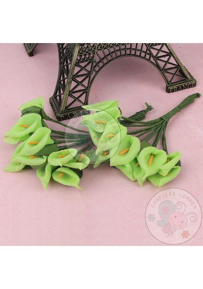 Calla Lily - Green