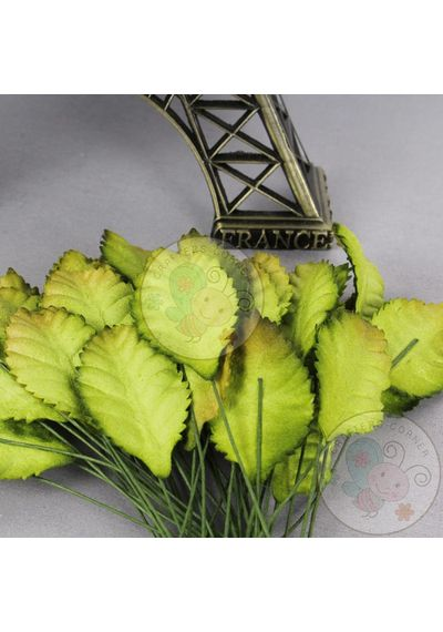 Greenish Brown - Mulberry Leaves