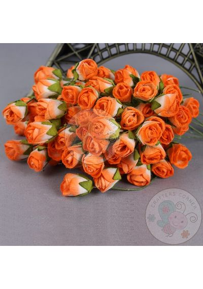 Shadow Orange - Mulberry Rose Buds