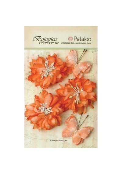 """Peach - Botanica Mums & Butterflies 2"""" - 2.5"""" 5/Pkg"""