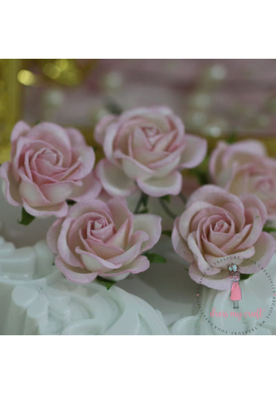 Curved Roses 35 MM - Soft Pink Combo