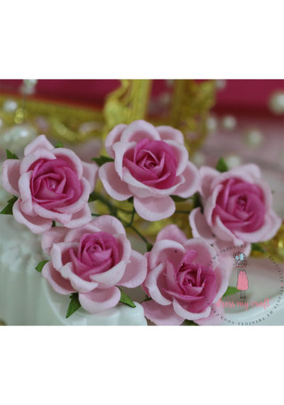 Curved Roses 35 MM - Bright Pink Combo