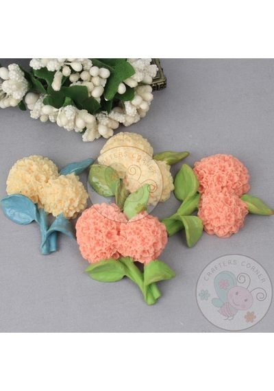 Hydrenga Flower