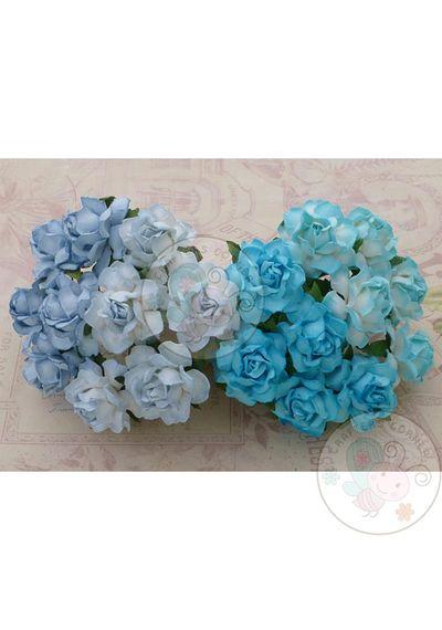 BLUE TONE - Twisted Roses Combo
