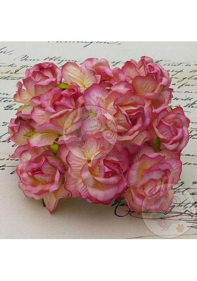 Curly Roses - Champange Pink Tone