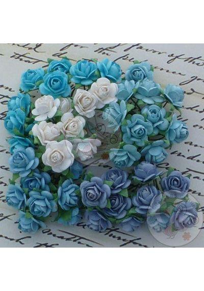 Blue Tone & White - Micro Roses Combo