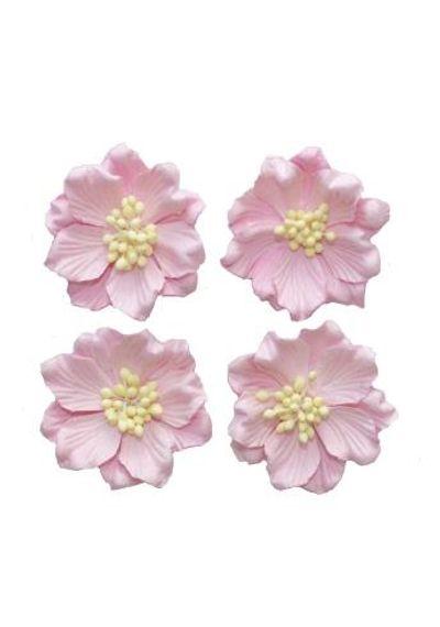 Gardenia Light Pink