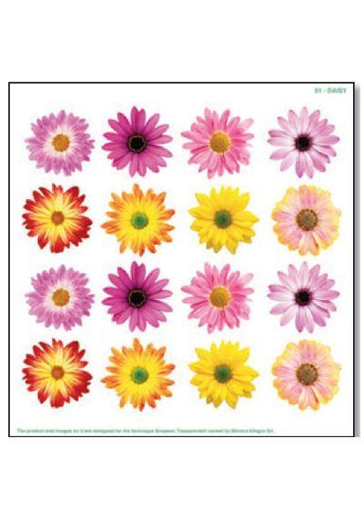Daisy - Printed Plastic sheet