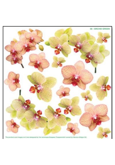 Green Orchid - Printed Plastic sheet