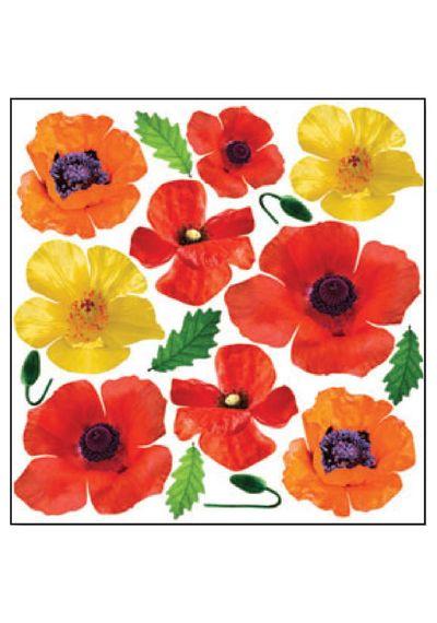 Poppy - Printed Plastic sheet