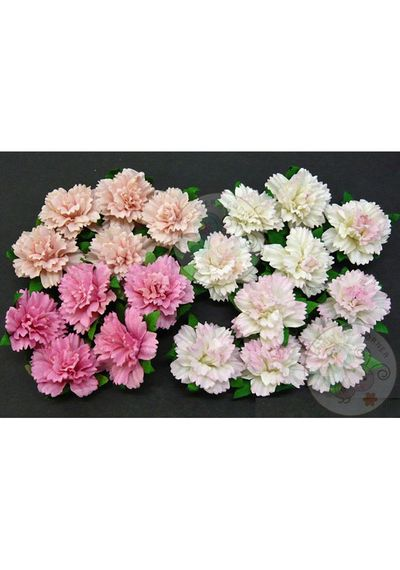 Pink - Carnations Combo