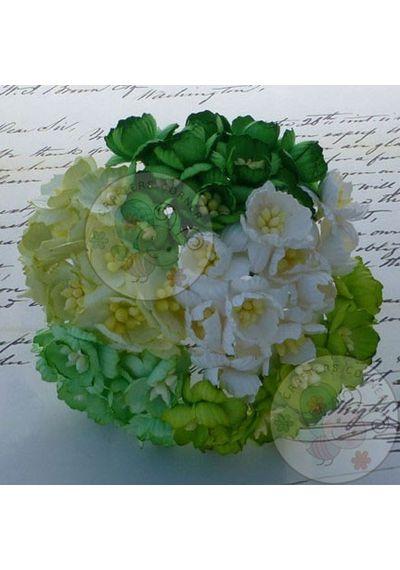 Green/White - Sakura Combo
