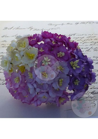 Purple/Lilac - Sakura Combo