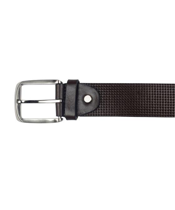 Leatherplus Brown Belt for Men(C-568)