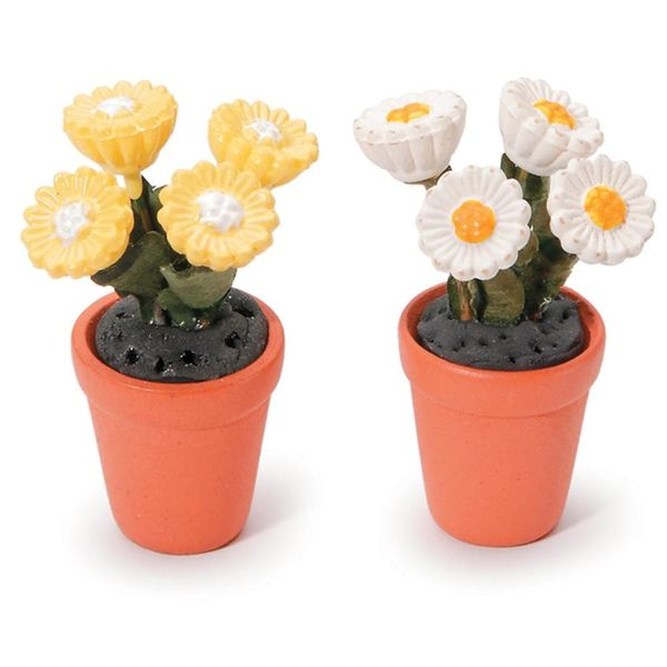 Potted Daisies 1/Pkg - Assorted Colour Miniatures