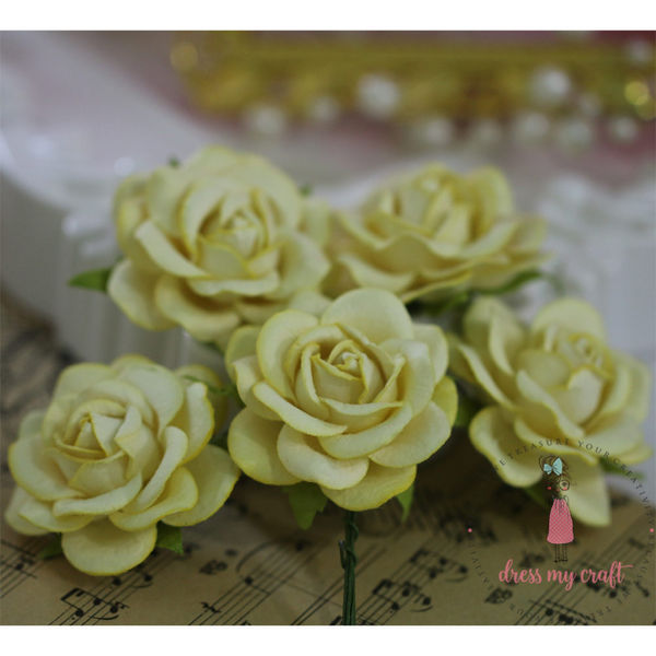 Curved Roses 45 MM - Pastel Yellow