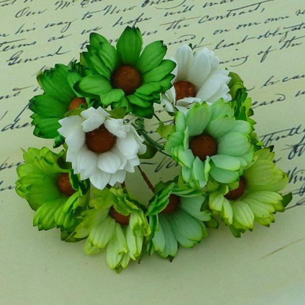 Daisy Flower - Green Combo