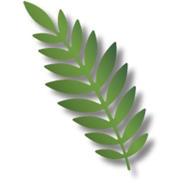 Large Leaf Left - Die