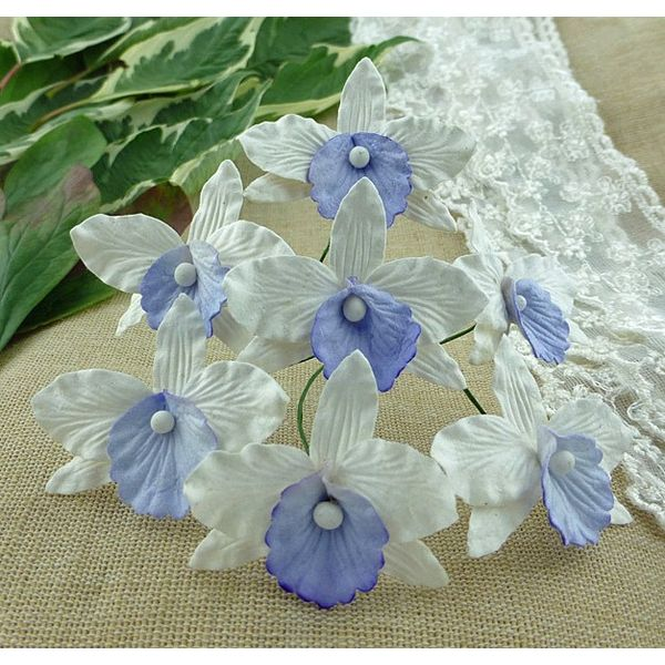 WHITE WITH LILAC/BLUE  - Orchids Combo