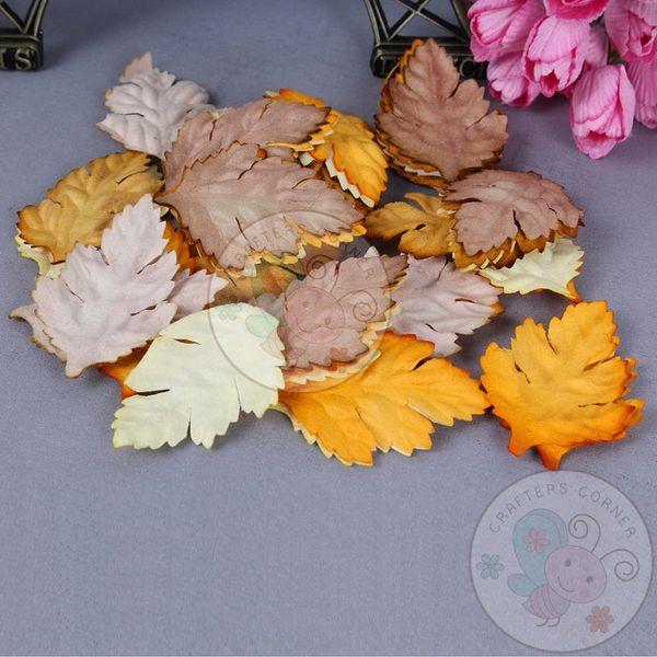 Autumn Season - Mulberry Leaves