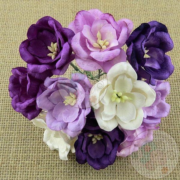 Poppy Rose - Purple/Lilac Tone