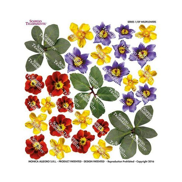 Wildflowers - Printed Plastic sheet
