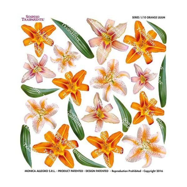 Orange Lilium - Printed Plastic sheet