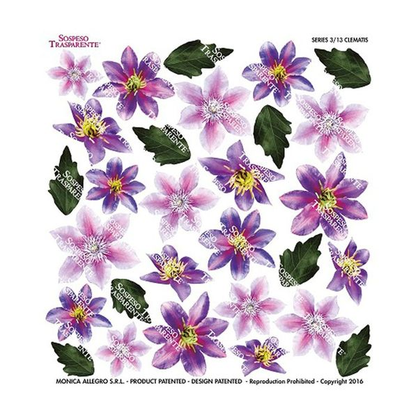 Clematis - Printed Plastic sheet