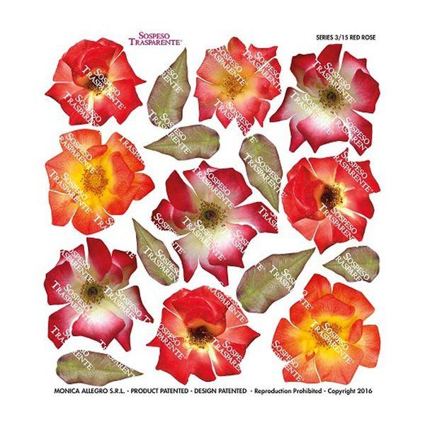 Red Rose - Printed Plastic sheet