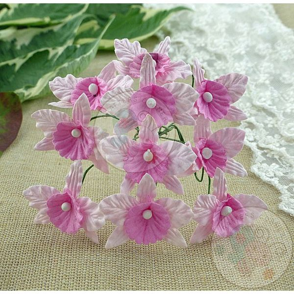 Baby Pink and Pink - Orchids Combo