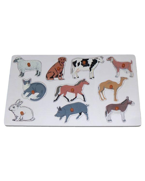 Name the Pet Animals