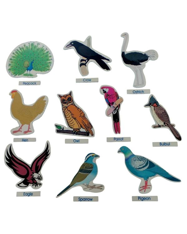 Birds Cut Outs Jumbo